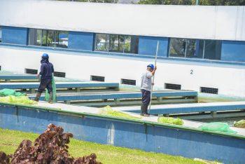 Sunass presentará en audiencia pública proyecto para operación y mantenimiento de planta de tratamiento de agua residual de Sicuani